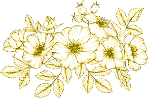 floral-illustration.jpg
